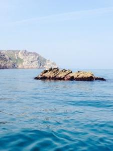 Diving knoll pins - Ilfracombe Sea Safari, North Devon