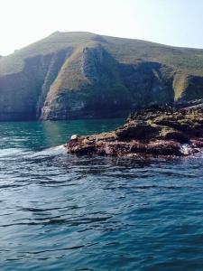 Lundy - Ilfracombe Sea Safari, North Devon