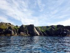 Another tough day at the office - Ilfracombe Sea Safari, North Devon
