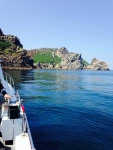 Diving Lundy - Ilfracombe Sea Safari, North Devon